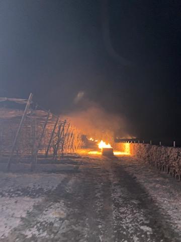 Les producteurs de fruit et légumes du grand quart Nord tentent de sauver leurs récoltes en allumant des feux de paille