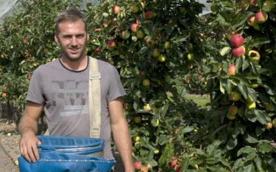 Les pommes HVE du Grand Nord